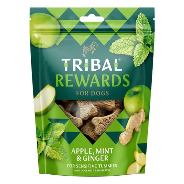Tribal Rewards Hondenkoekjes Appel, honing en gember